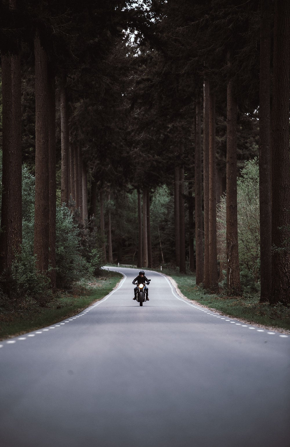 Man driving motorbike through forest